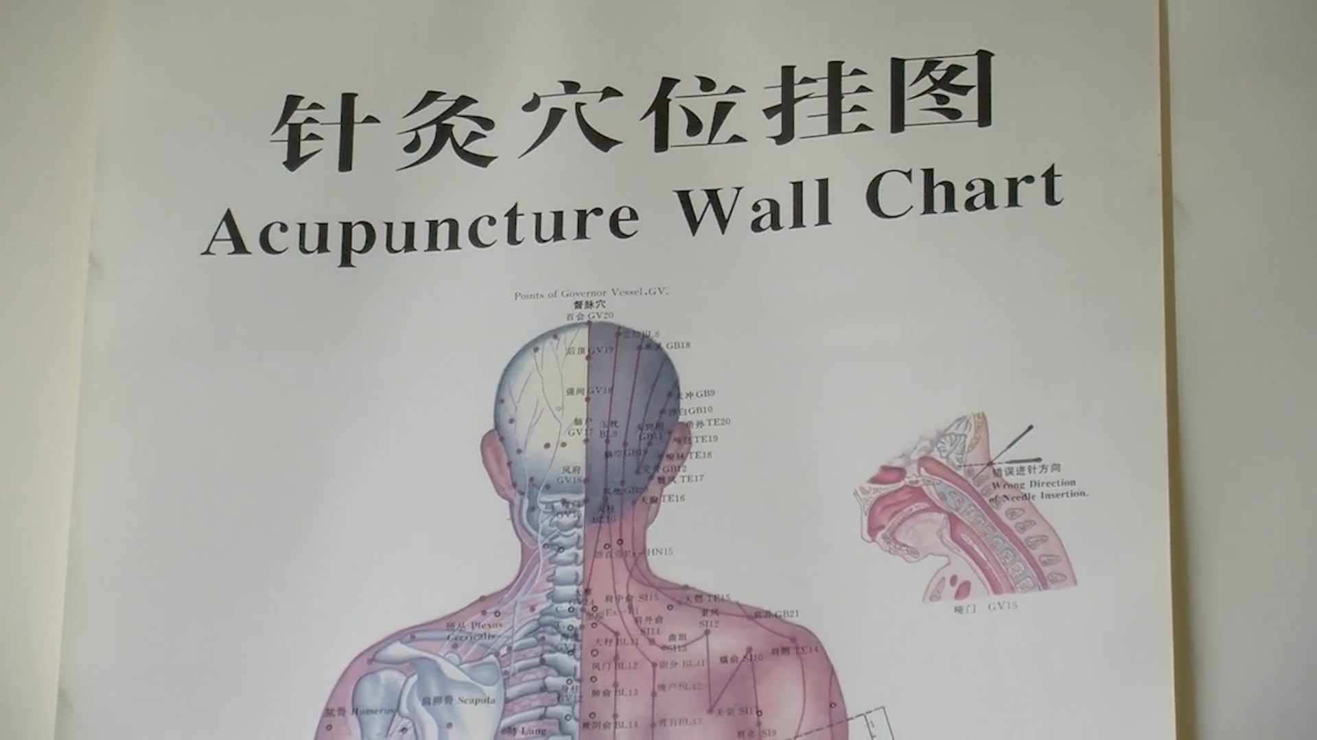 Acupuncture: Youth Segment