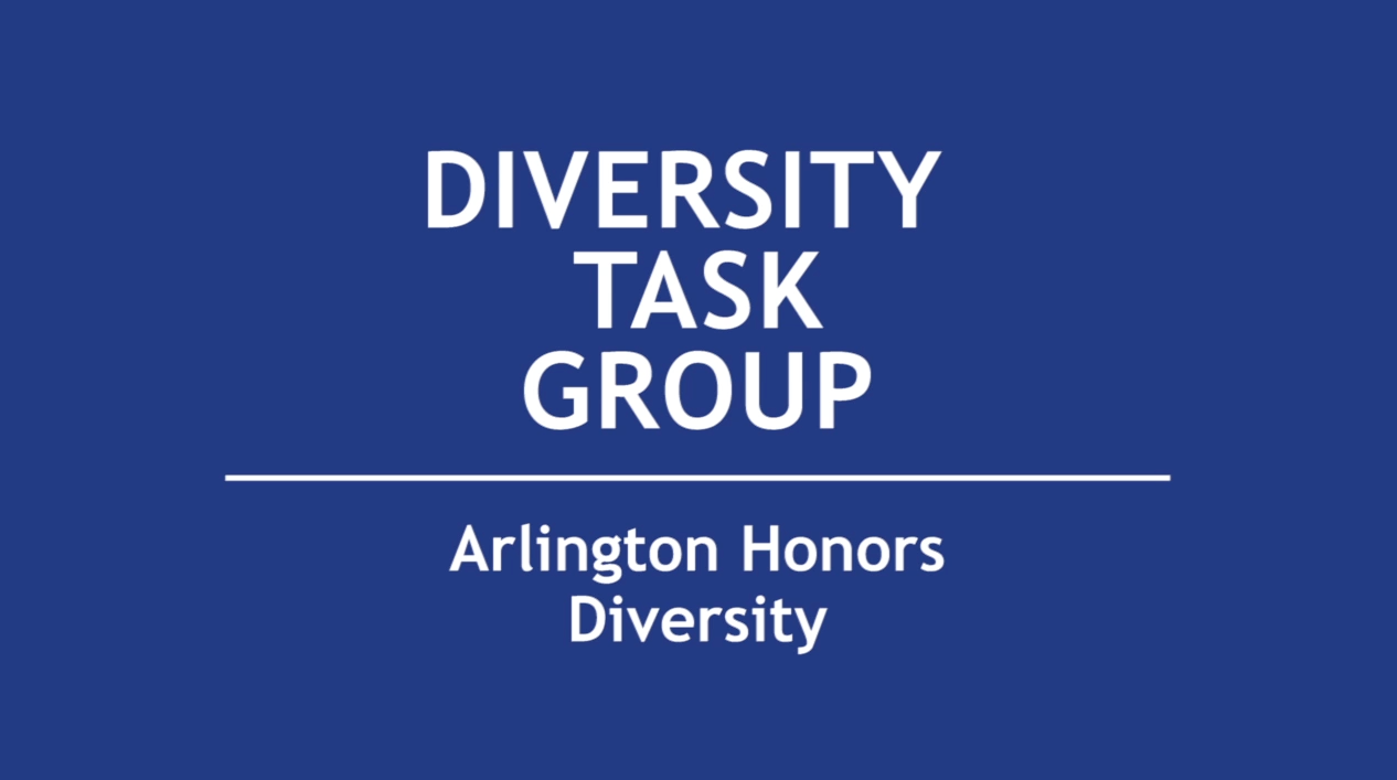 Diversity Task Group