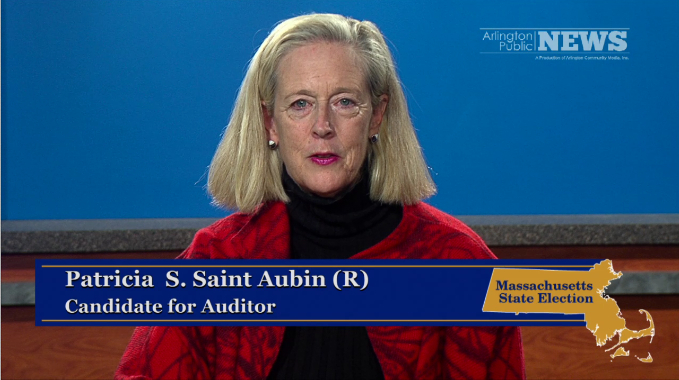2014 State Election – Auditor: Patricia S. Saint Aubin (R)