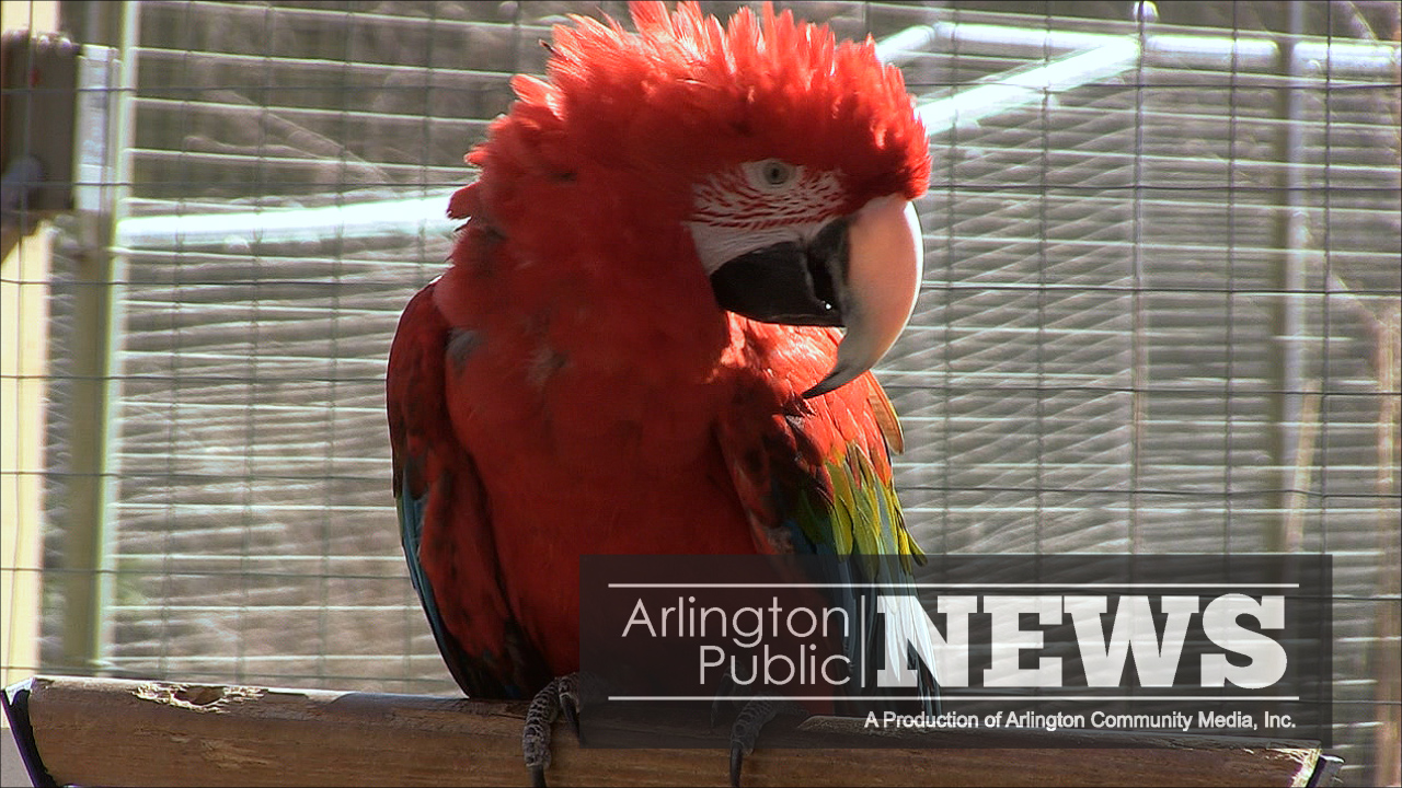 World Bird Sanctuary at Stone Zoo