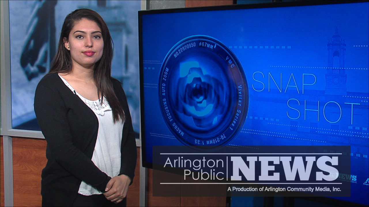 Arlington Snap Shot: Zoning Town Meetings