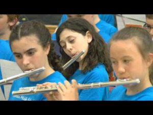 Ottoson Middle School Presents: Instrumental Ensembles Spring Concert – May 23, 2017