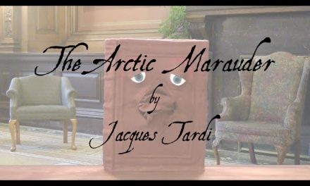 The Arctic Marauder Review