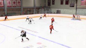 Arlington High School Girls Hockey vs Woburn – January 6, 2018