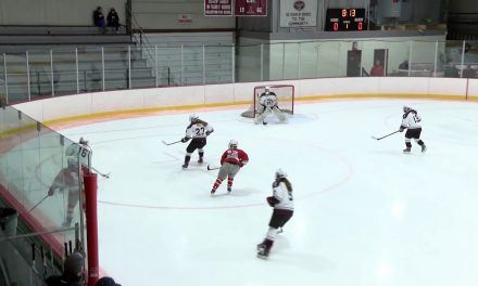 Arlington High School Girls Varsity Hockey vs Wakefield Memorial – January 24, 2018