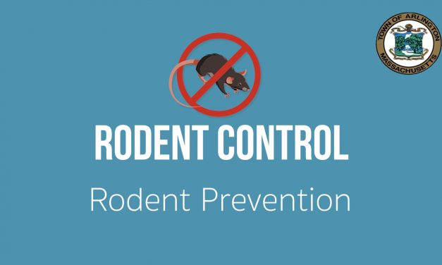 Rodent Control and Prevention in Arlington, MA – Ep. 1