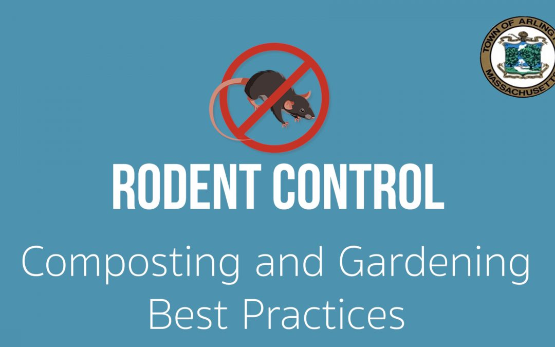 Composting and Gardening Best Practices – Ep.4