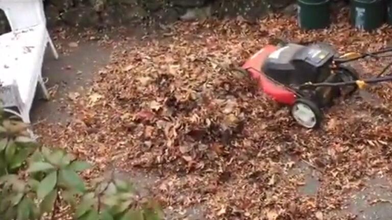 Lawnmower Acts As Shredder for Leaf Mulch