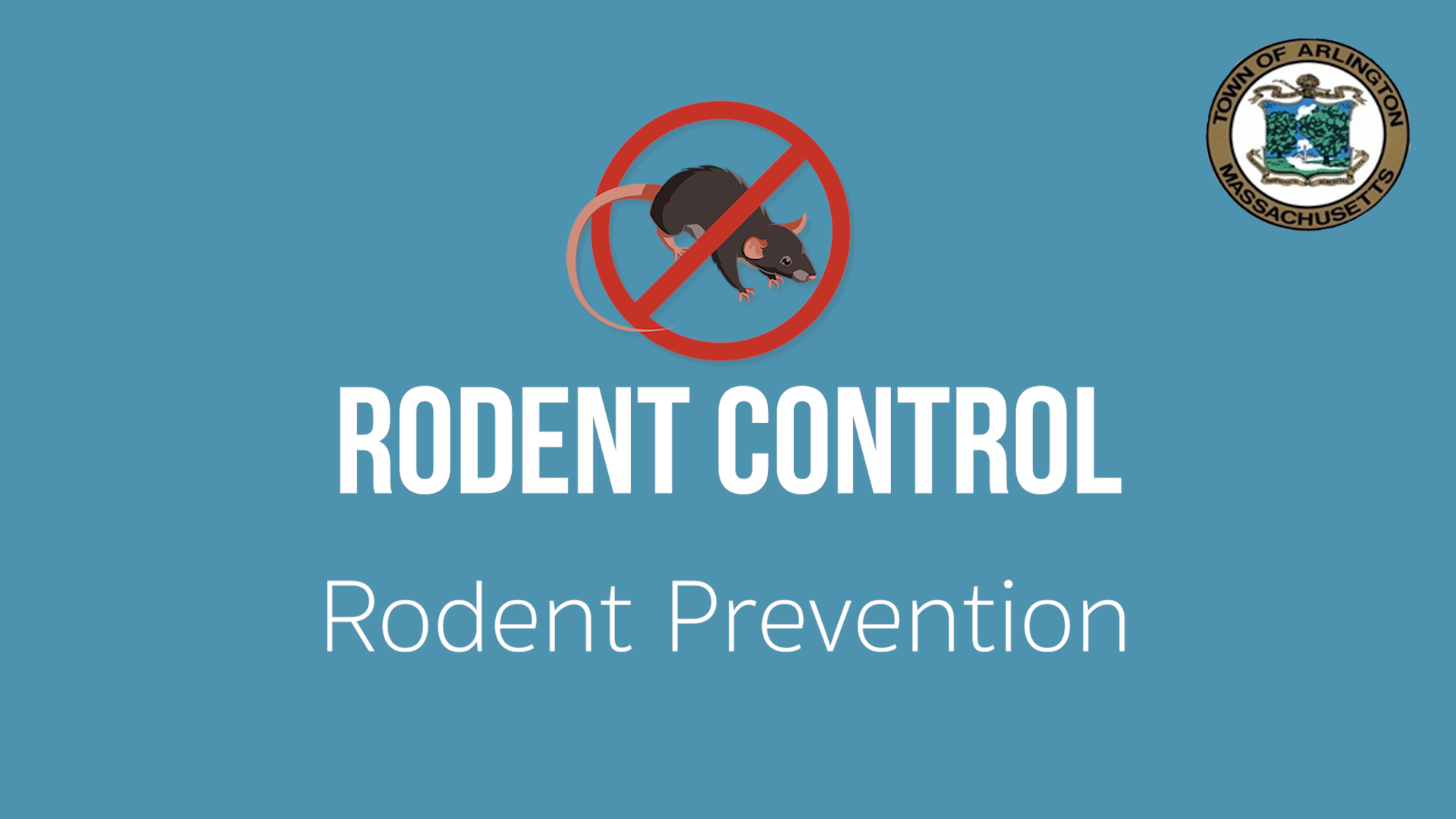 Rodent Control and Prevention in Arlington, MA - Ep  1