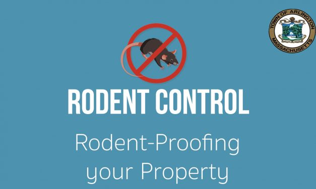 Rodent-Proofing Your Property – Ep.3