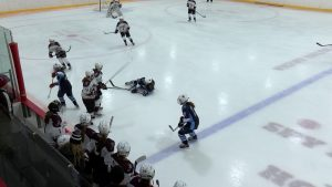 Arlington High School Girls Hockey vs Wilmington – January 26th, 2019
