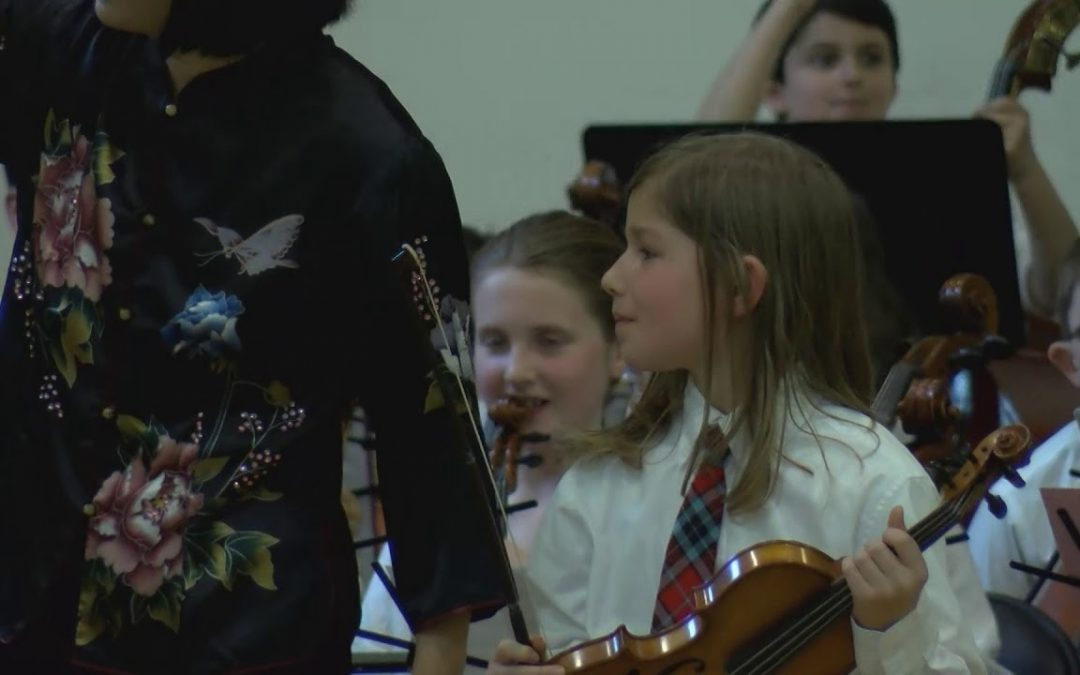 Arlington Public Schools All Town String Concert – 4 pm Performance – March 15, 2019
