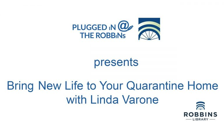 PLUGGED iN: BRiNG NEW LiFE TO YOUR QUARANTiNE HOME