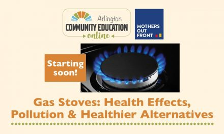 Gas Stoves: Health Effects, Pollution and Healthier Alternatives