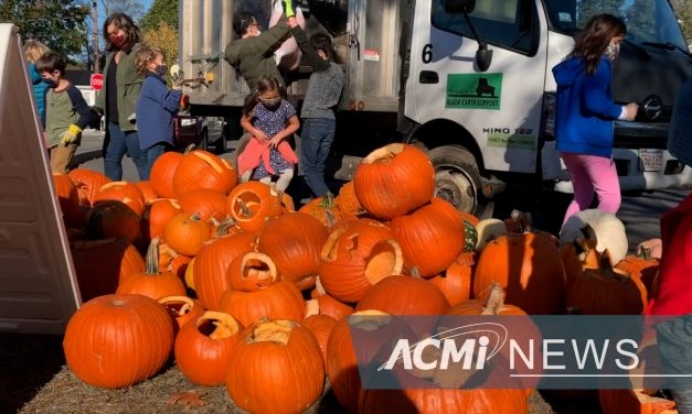Pumpkin Recycling Event